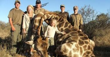 Un'altro sport crudele si sta diffondendo uccidere giraffe