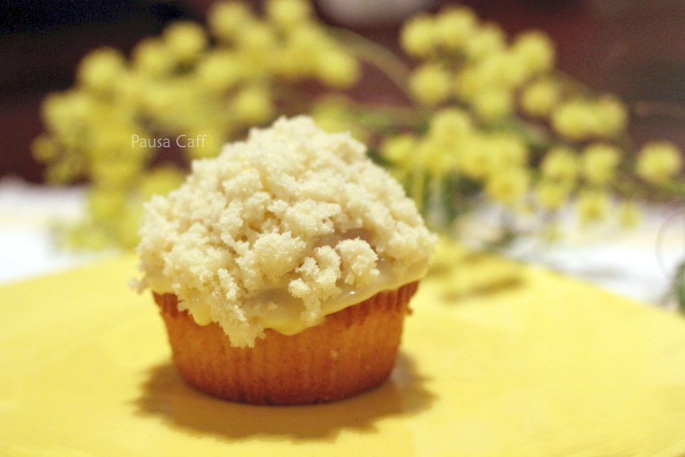 muffin mimosa (1) F2