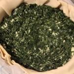 riempire con spinaci F