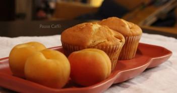 muffin albicocca (19) F