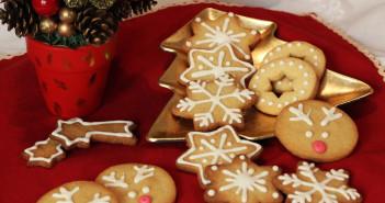 Biscotti-di-pan-di-zenzero-(3)-2-F