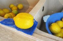 scorza-limoni-(1)