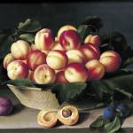 Louise Moillon - Nature morte aux abricots, 1634