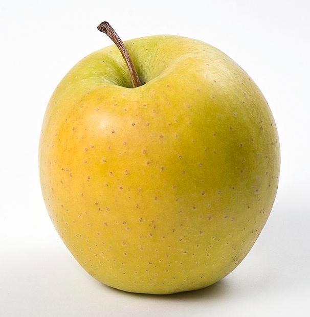 succosa mela rossa datazione