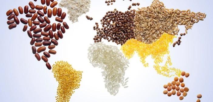 Giornata mondiale dell'alimentazione 2020 #EroiDellaAlimentazione