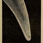 fiori-del-cielo-1879-di-richard-a-proctor