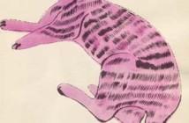 10 Il gatto Sam – Andy Warhol