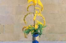 Euan Uglow - Vaso con mimosa (1970)