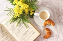 Mimosa libri caffè (19) 1 F
