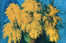Moise Kisling - vase-of-mimosa-1952