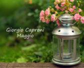 Giorgio Caproni – Maggio